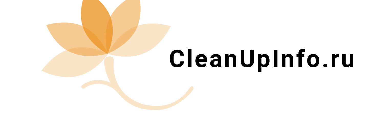 https://cleanupinfo.ru